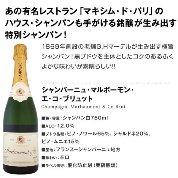 シャンパン2本セット 第24弾 スパークリングワインセット sparkling wine set Champagne|kbwine|02