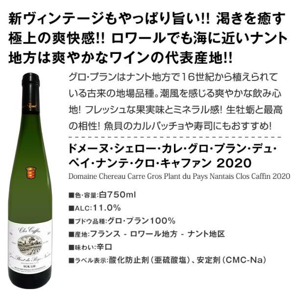 白ワイン6本セット 辛口 第112弾 wine set イタリア フランス kbwine 07