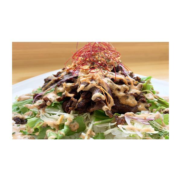 お肉 ジビエ 鹿肉 ケバブ 焼肉 3食セット 和歌山 数量限定 古座川の隠れグルメをご自宅で