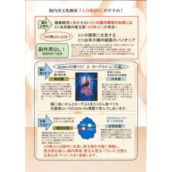 4瓶setコッカスストロング [最新品が最安値]アドバンス腸内細菌食品*送料無料 kdckdc 06