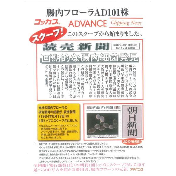 2缶setコッカスゴールドスーパー [最新品が最安値]アドバンス腸内細菌食品*送料無料|kdckdc|05