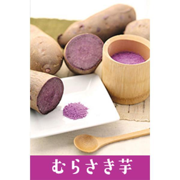 野菜パウダー 野菜ファインパウダー 紫いも 100g / 国産野菜100% 製菓 製パン 製麺 料理 野菜 パウダー 国産 紫いもパウダー 離乳食や介護食にも