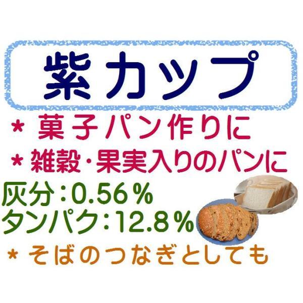 紫カップ 10kg (1kg×10袋) 強力粉 小麦粉 パン用粉 麺用粉 1kg×10袋 / 送料無料 / パン用 パン作り パン ホームベーカリー パン材料 10キロ 【同梱不可】
