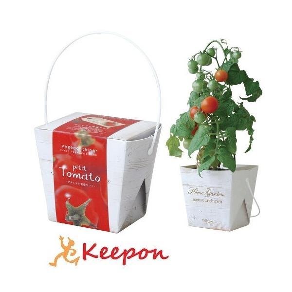 ベジコンテナ プチトマト アーテック 家庭菜園 栽培 家庭 野菜 簡単 プチ栽培セット 室内 コンパクト 家庭栽培