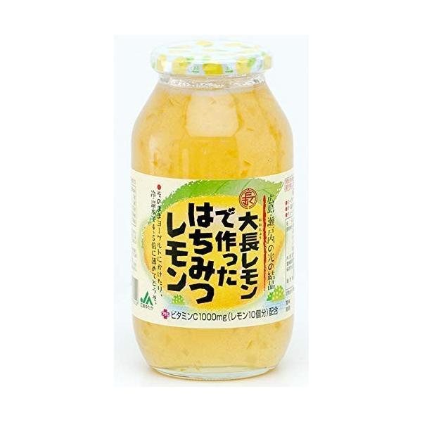大長レモンでつくった【はちみつレモン】【980g】|keiandk