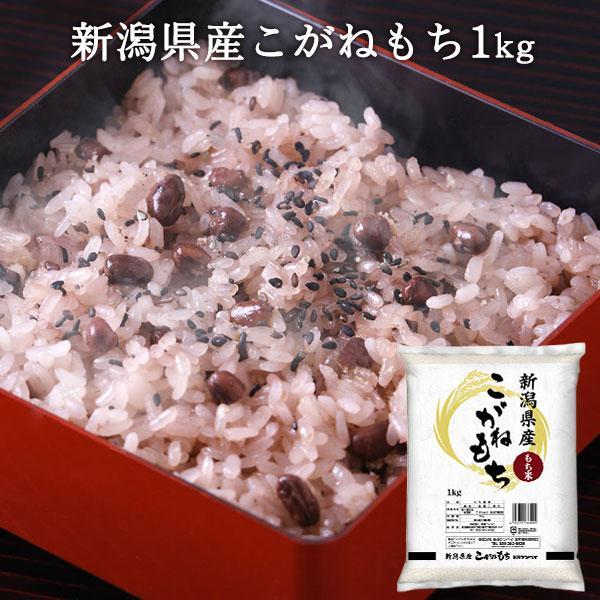 もち米 1kg 新潟産こがねもち 精米 条件付送料無料 餅米 令和2年産 餅米