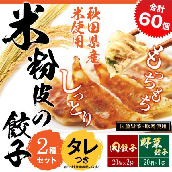 米粉の皮で包んだ餃子セットB(野菜餃子3袋×肉餃子3袋×タレ10個)