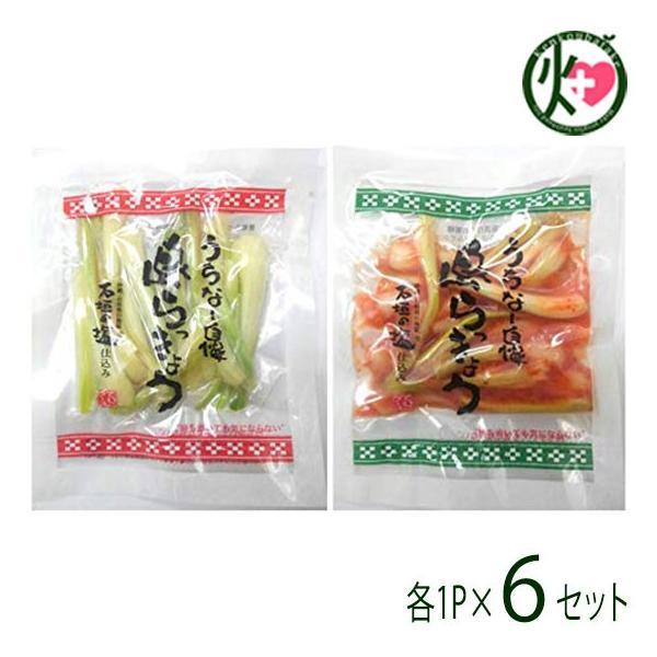 沖縄県産 島らっきょう 塩漬け キムチ 各50g 各1P×6セット でいごフーズ おすすめ イチオシ おつまみ アリシン 送料無料