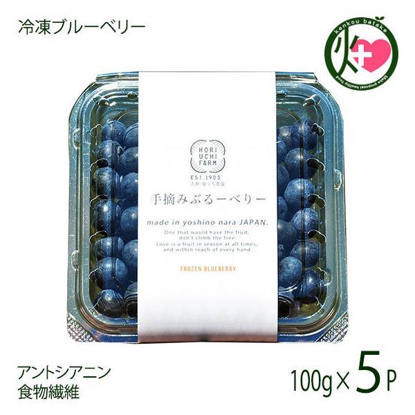 冷凍ブルーベリー100g×5P 堀うち農園 無農薬栽培 安心 安全 条件付き送料無料