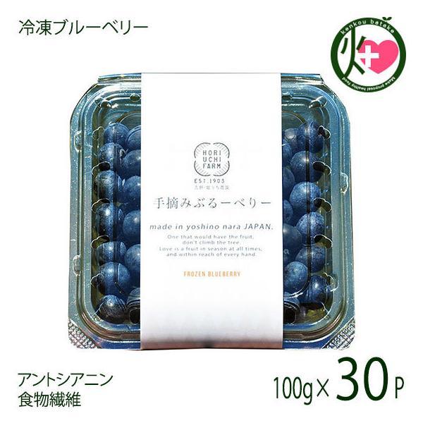 冷凍ブルーベリー100g×30P 堀うち農園 無農薬栽培 安心 安全 条件付き送料無料