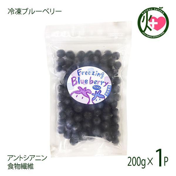 堀うち農園 冷凍ブルーベリー200g×1P 無農薬栽培 安心 安全  条件付き送料無料