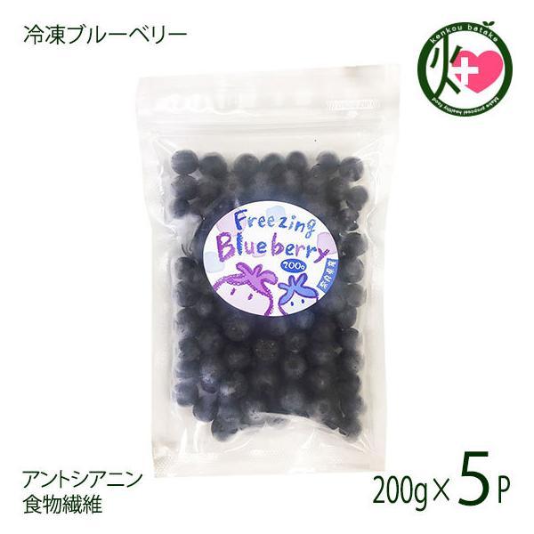 堀うち農園 冷凍ブルーベリー200g×5P 無農薬栽培 安心 安全  条件付き送料無料