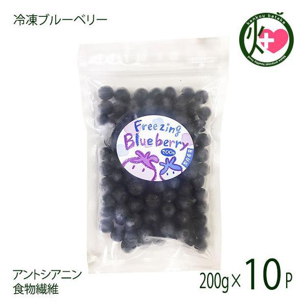 堀うち農園 冷凍ブルーベリー200g×10P 無農薬栽培 安心 安全  条件付き送料無料