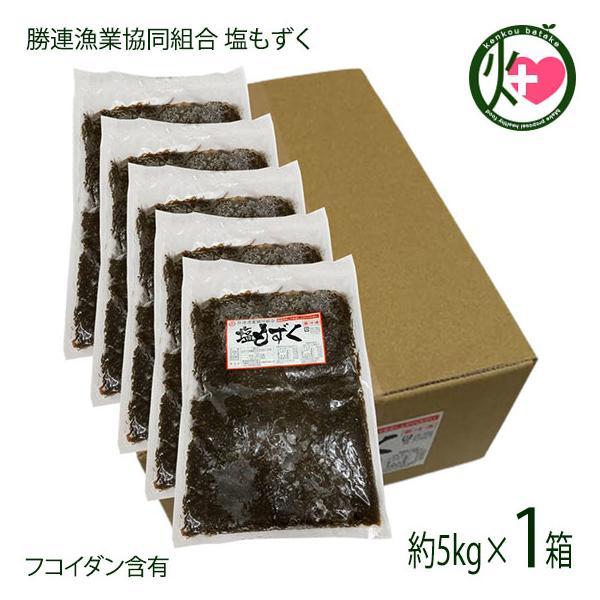 塩もずく5kg(容器)×1箱 勝連漁業協同組合 沖縄 土産 人気 もずく フコイダン 送料無料