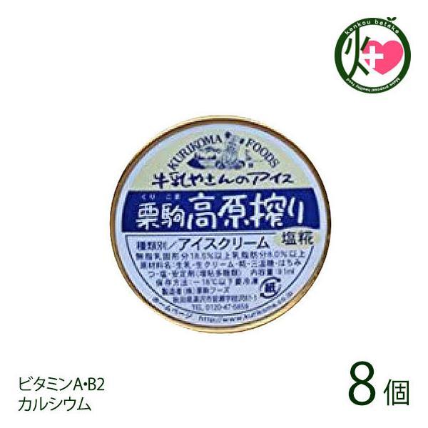 塩糀アイス 8個 栗駒フーズ 秋田 贈り物 極上手作りアイス 牛乳屋さんのアイスクリーム ご当地アイス 冬アイス ビタミンA・B2 カルシウム 送料無料