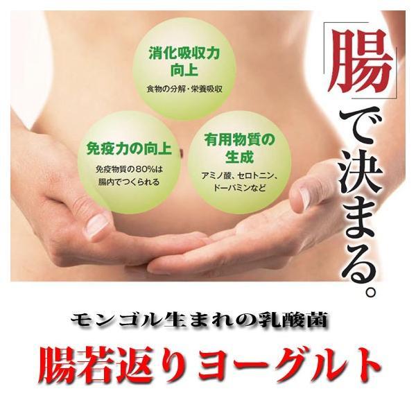 話題のモンゴル乳酸菌「腸若返りヨーグルト」20本 送料無料 乳酸菌飲料|kenko-batake|02