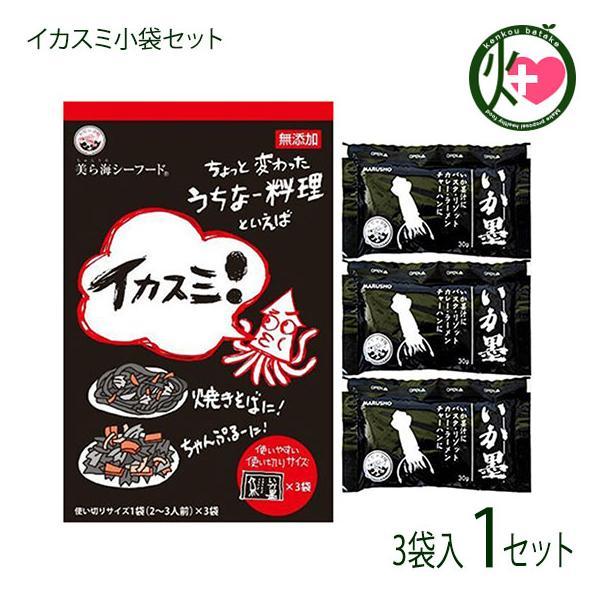 イカスミ小袋セット 90g(30g×3袋)×1 沖縄土産 無添加 イカ墨 イタリア料理 送料無料
