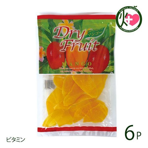 ドライフルーツ マンゴー 140g×6袋 南風堂 沖縄 人気 定番 土産 乾燥果物 トロピカルフルーツ ビタミン 送料無料