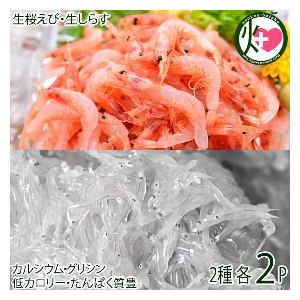 駿河湾産 ぷりぷり 桜えび 40g×2 駿河湾産 ぷりぷり 生しらす 110g×2 おいしい産業 -40℃急速冷凍 しらすはカルシウム エビはビタミンE豊富 条件付き送料無料