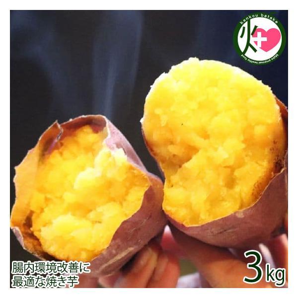 コロコロまあるいおいも シルクスイート 3kg 米川農園佐之衛門 茨城県 土産 冷凍焼き芋 やきいも 腸内環境改善に 最適な焼き芋 条件付き送料無料