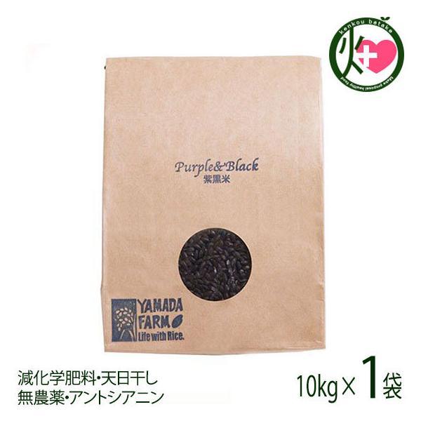 紫黒米 古代米 10kg×1袋 青森県 人気 健康管理 国産米 土産 ダイエット 条件付き送料無料