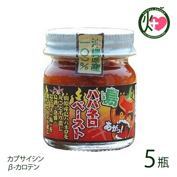 島ハバネロペースト 40g×5瓶 沖縄県産島ハバネロ100% 泡盛と島塩でペースト状に仕上げた超激辛スパイス  送料無料