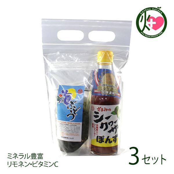 塩水海ぶどう35g ぽんず250ml×3セット 座間味こんぶ 沖縄 人気 土産 お取り寄せ 海藻 調味料 詰め合わせ ミネラル豊富 リモネン・ビタミンC 送料無料