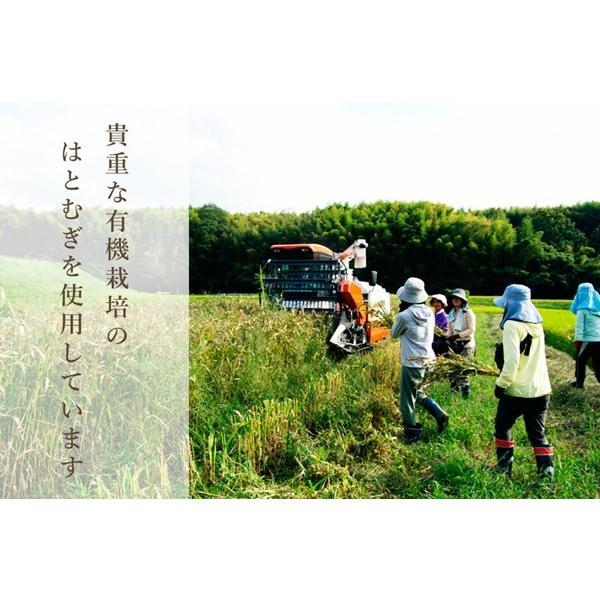 ハトムギ ハトムギ茶 活性はとむぎ美人茶 農薬不使用ティーバックタイプ はと麦 はと麦茶 鳩麦 奈良県産 自社栽培|kenko-soleil-y|04