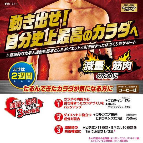プロテイン ダイエット SMART×MUSCLE ウエイトダウンプロテイン 364g コーヒー味 井藤漢方製薬|kenkou-otetsudai|03