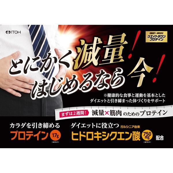 プロテイン ダイエット SMART×MUSCLE ウエイトダウンプロテイン 364g コーヒー味 井藤漢方製薬|kenkou-otetsudai|05