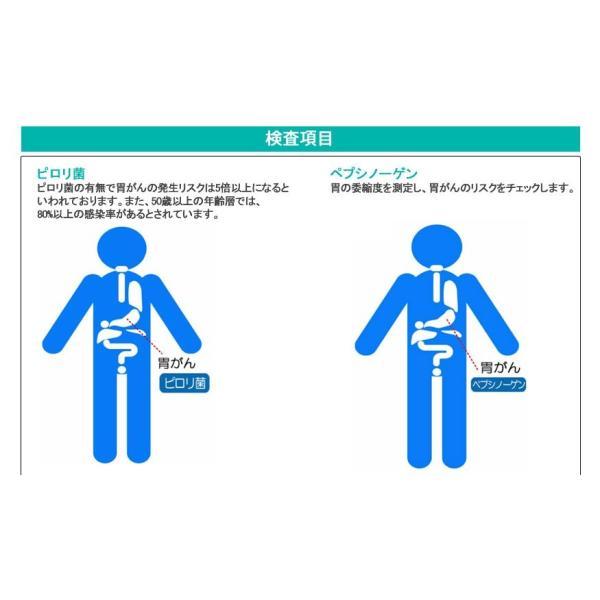 胃がんリスクチェック(ABC分類)【デメカル血液検査キット】正規販売店|kenkou-senka|02