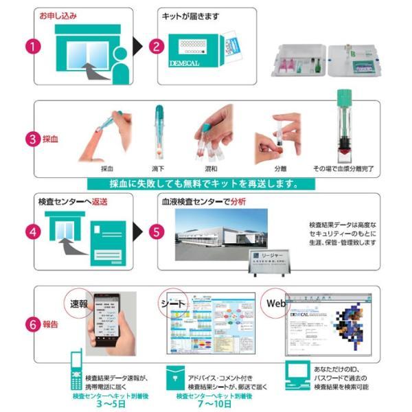胃がんリスクチェック(ABC分類)【デメカル血液検査キット】正規販売店|kenkou-senka|06
