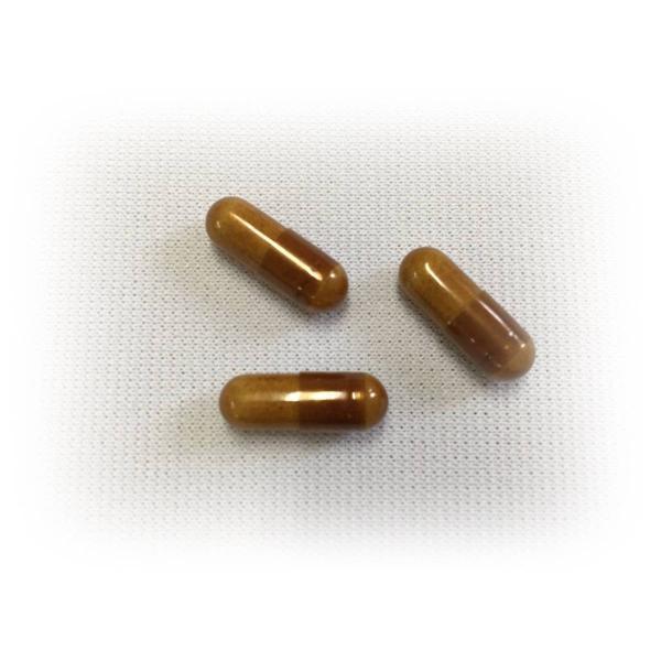 新ミミズ乾燥粉末  HLP  DHA EPA  赤ブドウ葉   ルンブルクスルベルス 清巡 kenkoudou 04