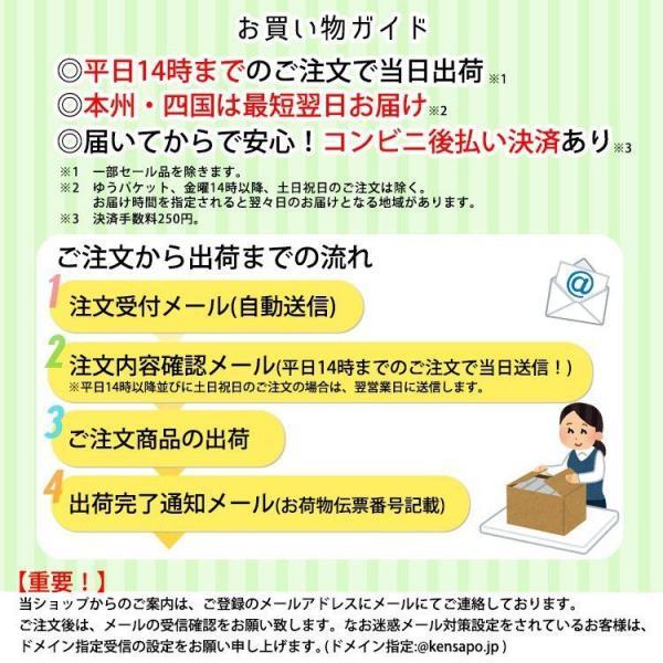 メニコン エピカ 310ml×3本セット/レンズケース付/洗浄液/コンタクト洗浄液 kensapo 02