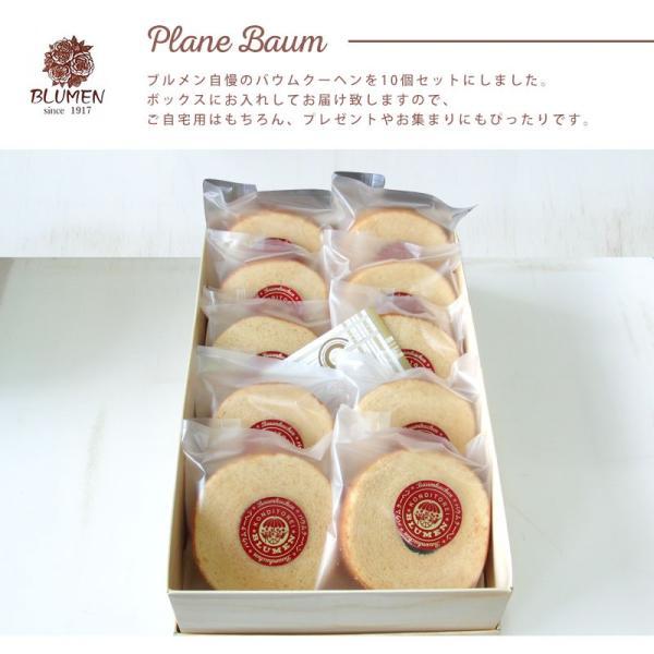 プレーンバウム10個セット バウムクーヘン 美味しい ギフト 個包装|kensbaum|03
