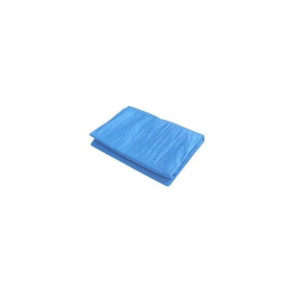 ブルーシート#3000 厚手 10.0×10.0(2枚入り)(10×10)