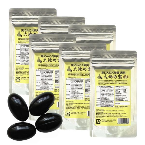 黒 にんにく卵黄 黒酢 120粒×6個お得セット  大地の宝 黒酢にんにく すっぽん サプリ