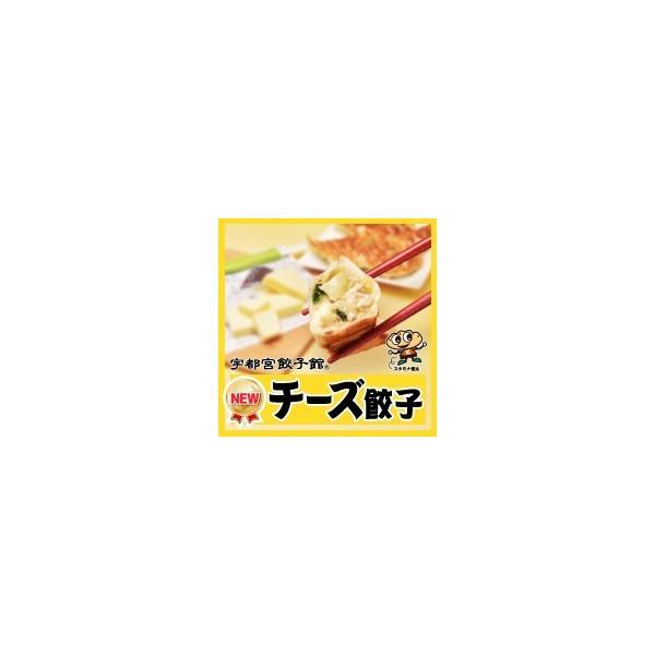 宇都宮餃子館 チーズ餃子 kentagyozakan