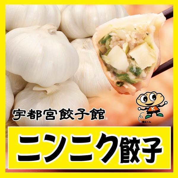 宇都宮餃子館 ニンニク餃子|kentagyozakan