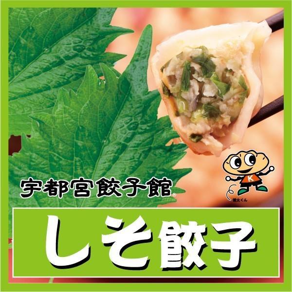 宇都宮餃子館 しそ餃子 kentagyozakan