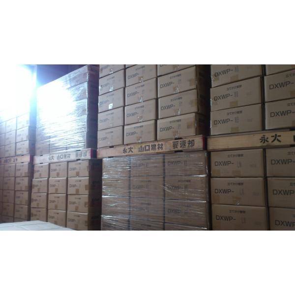 ダイレクトエクセル45HW DXWP-BM 永大産業|kentaro|04
