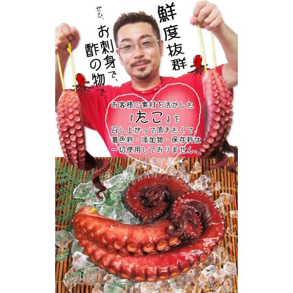 煮蛸 【小野敏商店】 (500g前後) 気仙沼 煮だこ たこ足 やわらか 無添加|kesennuma-san|03