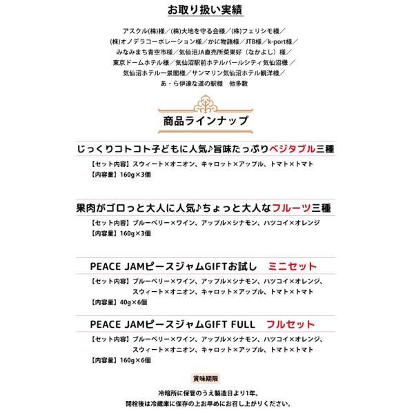 ピースジャムGIFT ミニセット【PEACE JAM】(6個入)気仙沼 ジャム ブルーベリー アップル オレンジ オニオン キャロット トマト|kesennuma-san|04