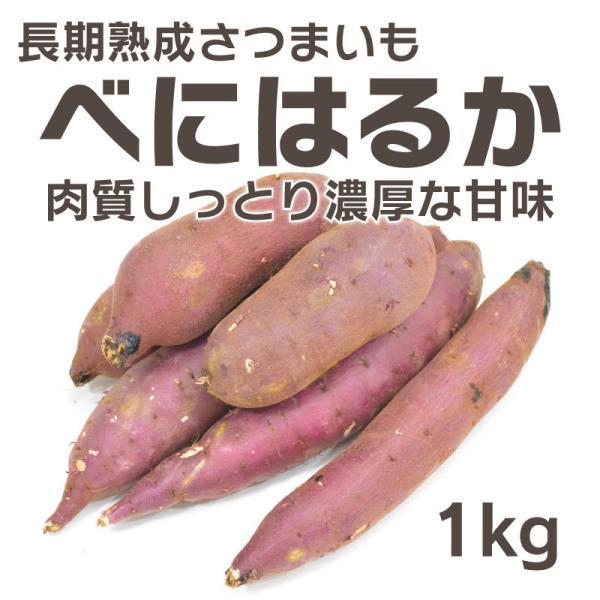 さつまいも 紅はるか べにはるか ベニハルカ 1kg 熟成  生芋 茨城県産