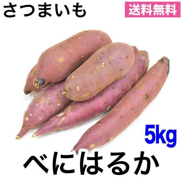 さつまいも 紅はるか べにはるか ベニハルカ 5kg 生芋 熟成 送料無料 茨城産