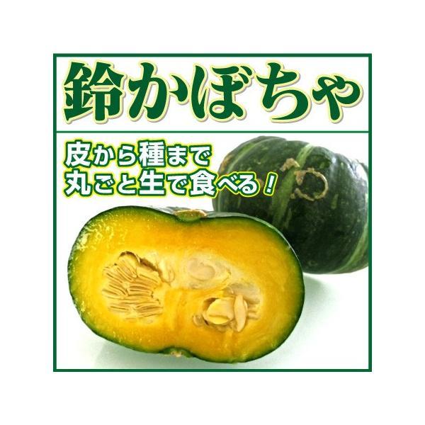 かぼちゃ サラダかぼちゃ 鈴かぼちゃ カボチャ 1玉 生食用 北海道 滋賀 熊本 沖縄 など