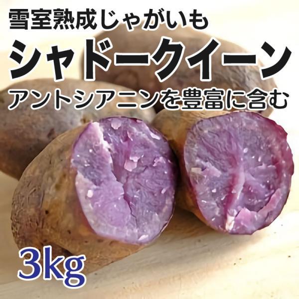 じゃがいも シャドークイーン 3kg 雪室熟成  訳あり 北海道産