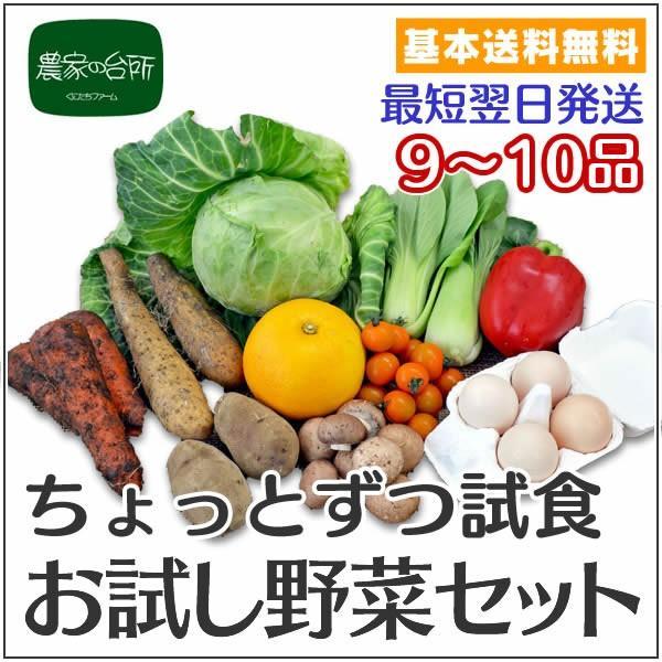 ちょっとずつ試食できる 農家の台所お試し野菜セット kf831