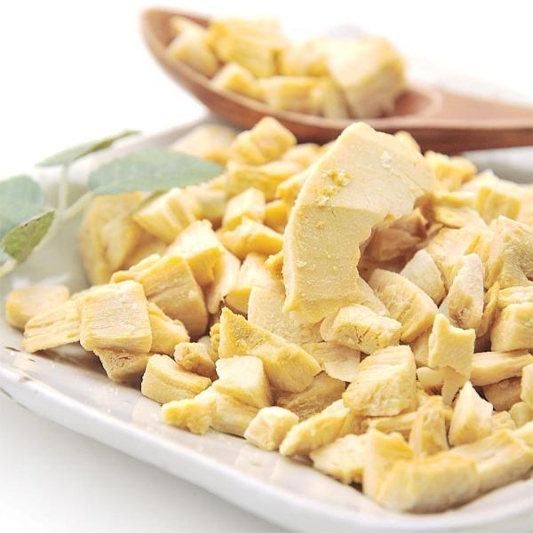 ココナッツチップス ココナッツ お試し 100g 素焼き 送料無料 ポイント消化