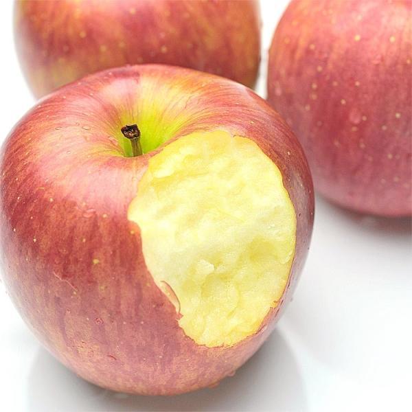 りんご お徳用 訳あり リンゴ バラ詰め 大きさ無選別 10kg 旬の産地より
